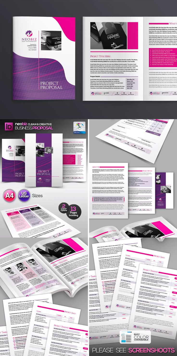 Clean Project Proposal Template InDesign INDD A4