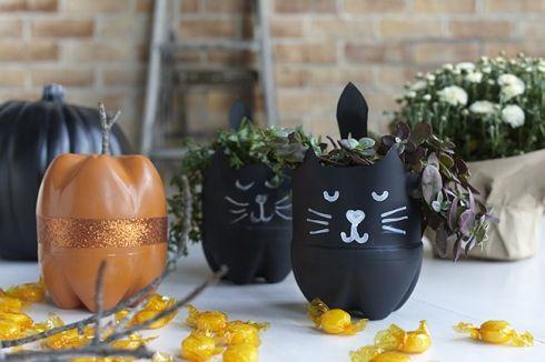 Chat noir et un pot à bonbon avec des bouteilles de plastique