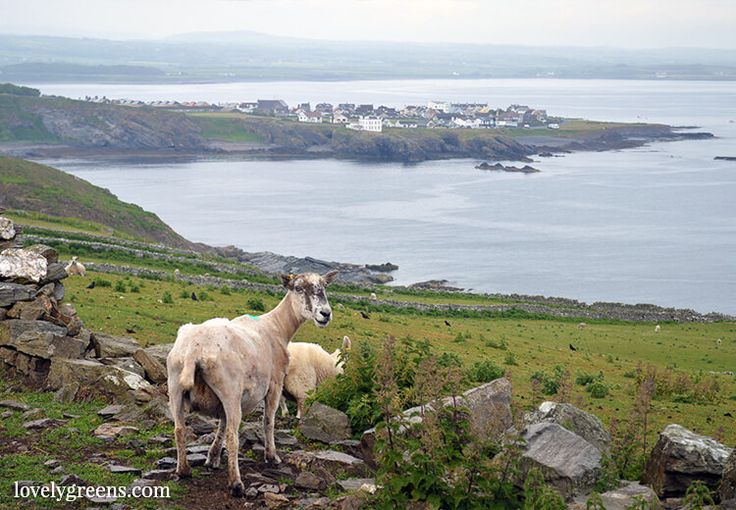 Unique weekend Itinerary for the Isle of Man: 14 ideas including the coastal footpath