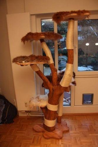 76 Besten Kratzbaum Bilder Auf Pinterest Haustiere Katzenmobel