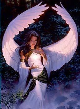 Light Harpy : Marian of the Shining Realm. Cast spells on her enemies and seduces men with her good looks. Dove wings.