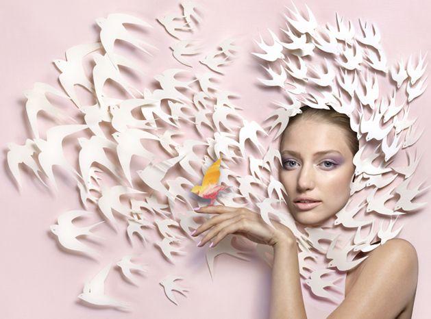 Paper-cut Installations by Stuart McLachlan