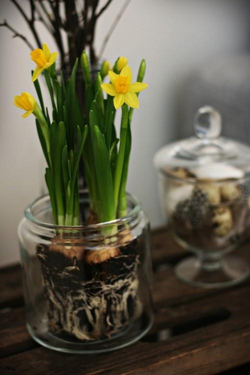 spring decorations