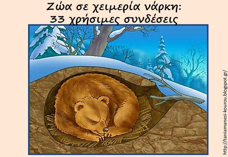 Δραστηριότητες, παιδαγωγικό και εποπτικό υλικό για το Νηπιαγωγείο: 4 τριπλές καρτέλες γραφής για τα Ζώα σε Χειμερία Νάρκη