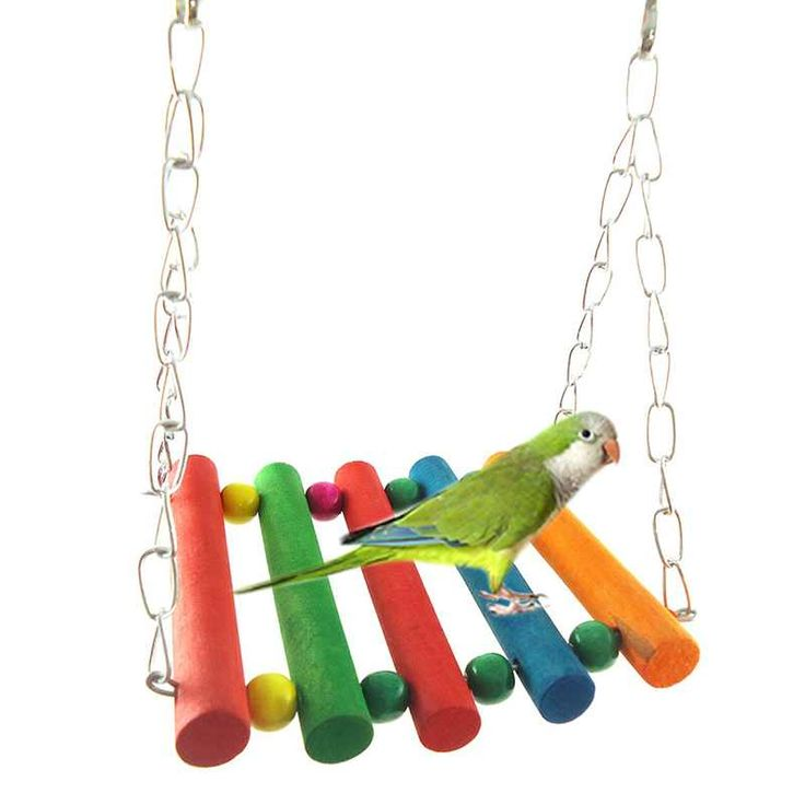 Pet Bird Toys Stander Garden Parrot Parakeet Swing Standing Frame Toys Four Types Pet Cage Accessories Rainbow Color