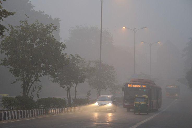 【AFP=時事】近年最悪規模の大気汚染に見舞われているインドのデリー(Delhi)首都圏 - Yahoo!ニュース(AFP=時事)
