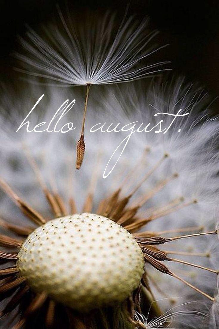 Hello August.
