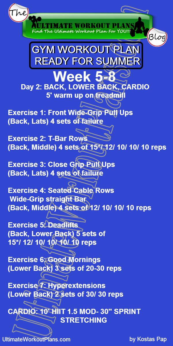 2 GYM WORKOUT PLAN READY FOR SUMMER MEN DAY 2 BACK LOWER BACK CARDIO » UltimateWorkoutPlans.com