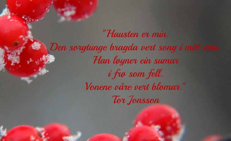 Nydelige T Jonsson ord
