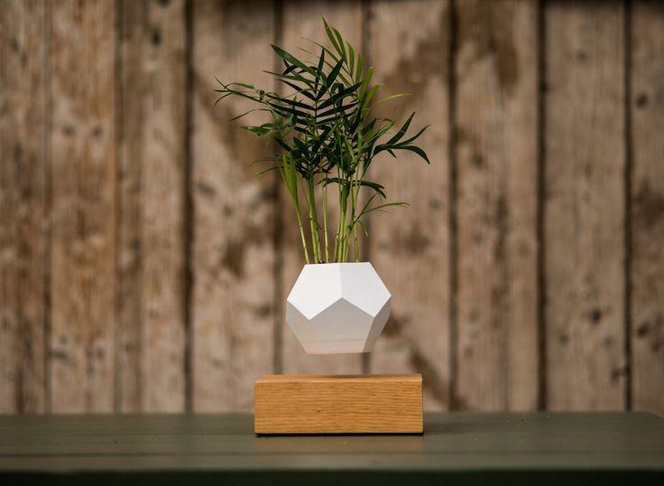 New Magnetized Planters Allow Your Garden to Levitate in the Air | Zeutch Après sa lampe en lévitation, le suédois Simon Morris a expérimenté la lévitation des plantes. Ce système appelé LYFE, se compose d'un planteur qui plane un peu au dessus d'une base en chêne, le tout alimenté par magnétisme puissant.