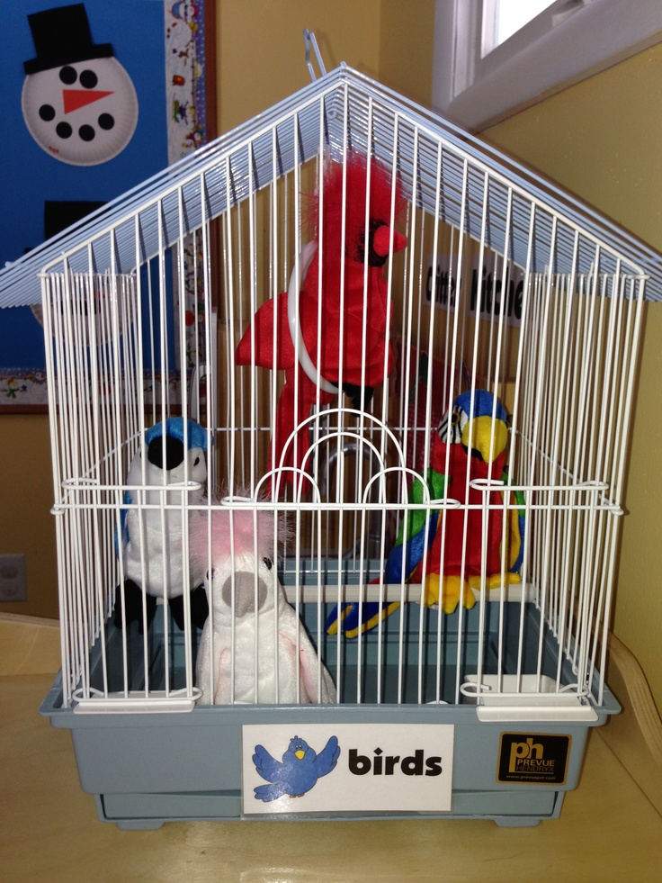 Janee what do you think of this one? Preschool Pet Shop~I like it to go along with the real bird