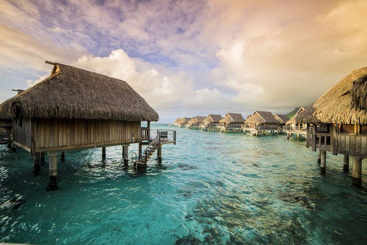 Tahiti - Moorea (Sofitel Hotel) -