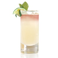 virgin pomegranate lime rickey recipes dishmaps virgin pomegranate ...