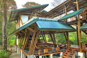 Estructura de bambú, Casa Atrevida | Arquitectura