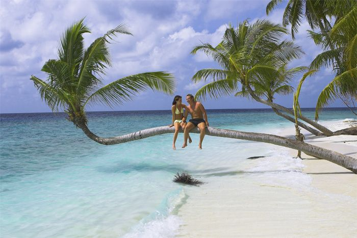 Wist u dat u op de Malediven de beste strand/bezoeker ratio ter wereld heeft? Rondreis - Strandvakantie - Malediven - Maldives - Vakantie - Sri Lanka - Beach