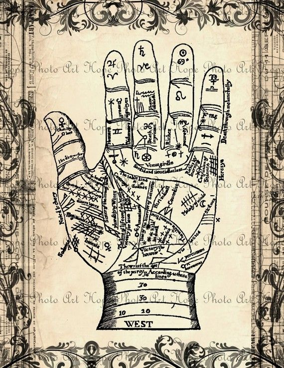 Palmistry Vintage Fortune Teller 8.5x11 Collage - fortune telling Image Transfer Burlap Feed Sacks Pillows Tea Towels- U Print JPG 300 dpi  HopePhotoArt