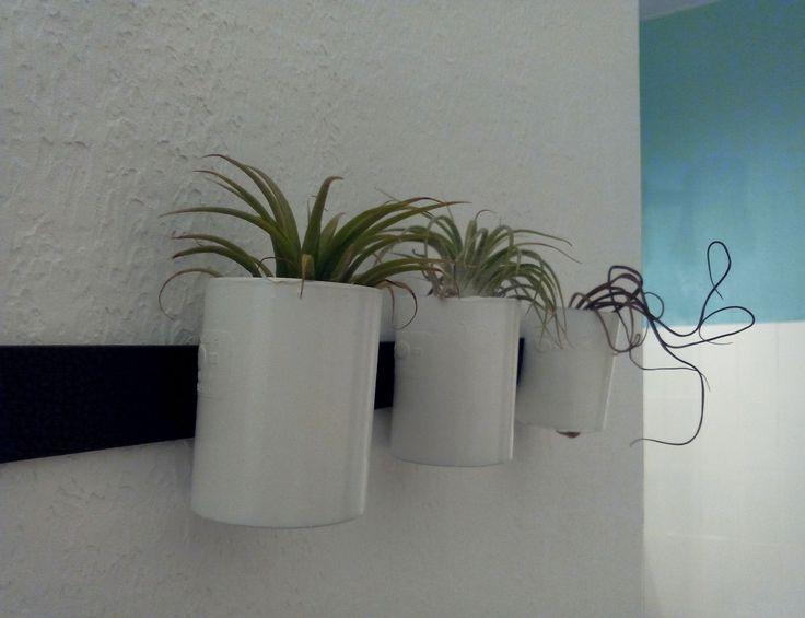 Decorazioni bagno - Vasetti dipinti - Piante senza terra - blu piscina - Cuoio nero - Décoration salle de bains - plantes aériennes - Tillandsia - Bleu piscine