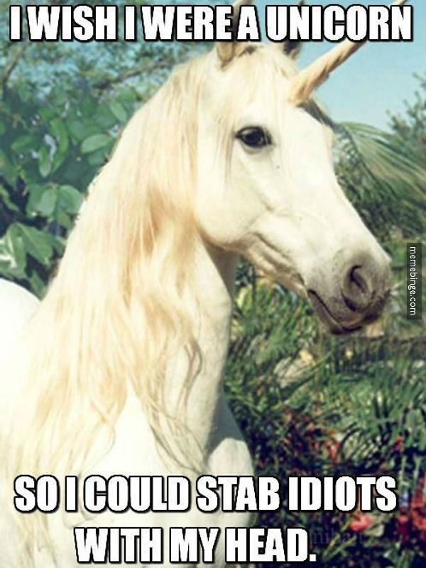 The benefits of being a Unicorn