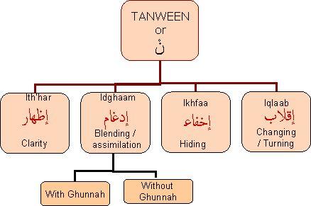Tajweed rules with pdf