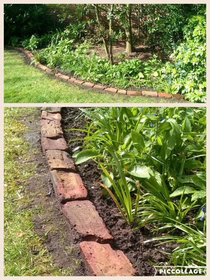 Making use of old bricks in the garden. After scrubbing them one by one, the lovely terracotta colour shone through. It creates a lovely edge to any grassed area.   #brick #garden