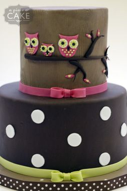 Owl cake. I like how they set up the branch horizontally instead of the typical vertical tree like branch.