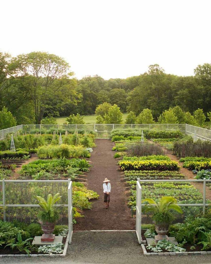 69 best vegetable garden design le potager images on for Vegetable garden maintenance