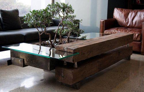 bonsai wood glass coffee table