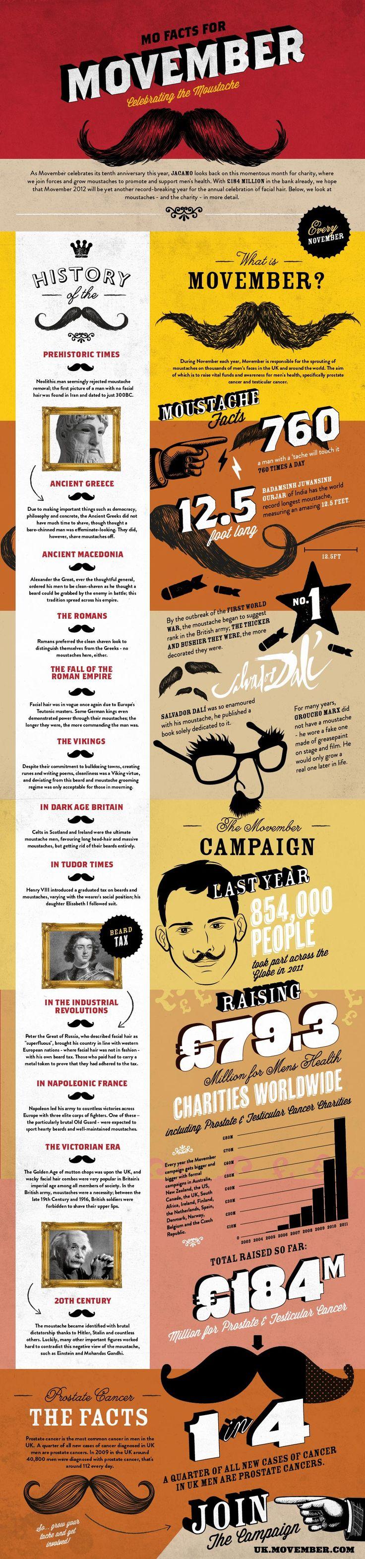 Mo Factas for Movember Infographic