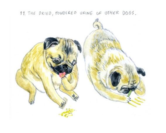 """Part of an illustrated article titled """"What Dogs Want"""""""