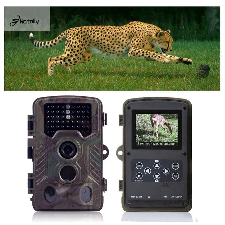 82.69$  Buy now - http://ali1qm.shopchina.info/go.php?t=32731493791 - Skatolly H801 IP56 Tactical Hunting Camera  Infrared Trail Game Dustproof Precise For Outdoor Hunting Camera Pk HC300m HC-500M 82.69$ #buymethat