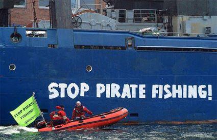 Greenpeace se felicita por la apertura de un expediente sancionador contra Vidal Armadores por pesca ilegal