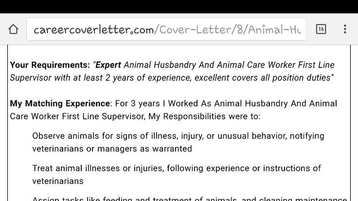 19 best Resume design images on Pinterest Resume design, Resume - animal care assistant sample resume