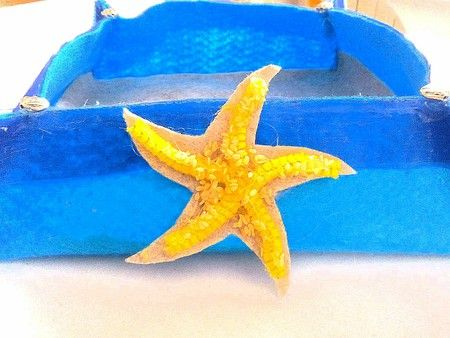Svuotatasche in feltro con stella marina - ART.040