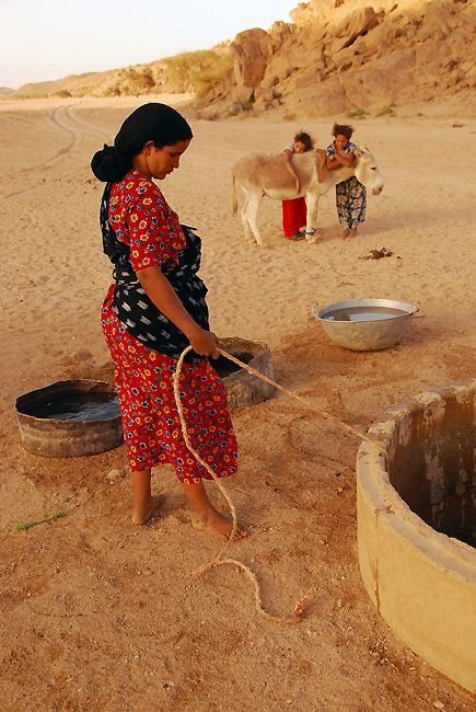 17 Best images about In the Desert on Pinterest | Saudi ...