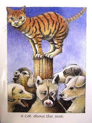 A cat above the rest - Simon Drew
