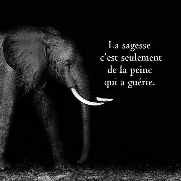 Alors je ne suis pas encore prête à être sage……