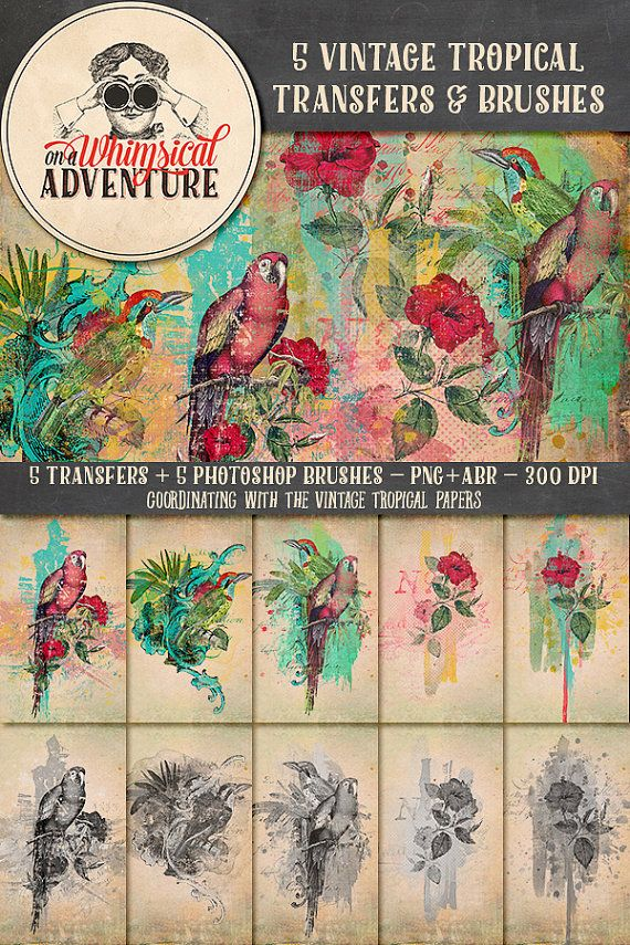 Vintage Tropical Digital Transfers and Photoshop Brushes Pack instant download…