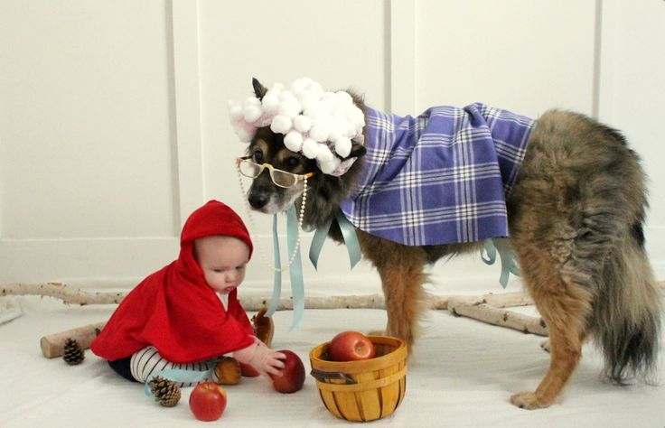 The Sweetest Little Red Riding Hood and the Big Bad Wolf Costume ...