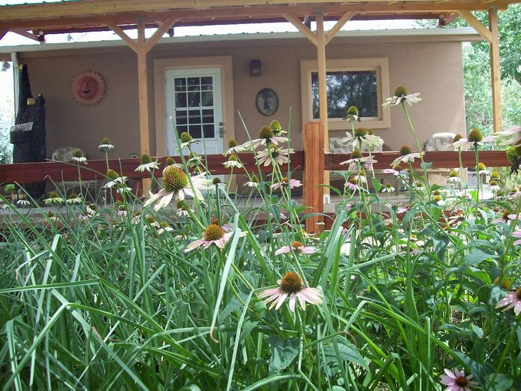 Grizzly Rose Cottage, Cortez, $150/night (place with teepee)