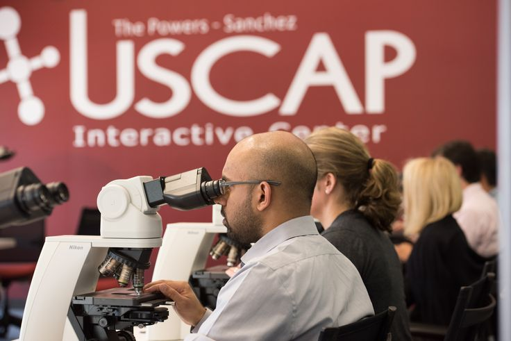 Palm Springs, CA-based USCAP Interactive Center interior branding installed by DesertWraps.com. Contact us to learn more about interior branding options. 760-935-3600. #InteriorBranding #Branding #PalmSprings #Science