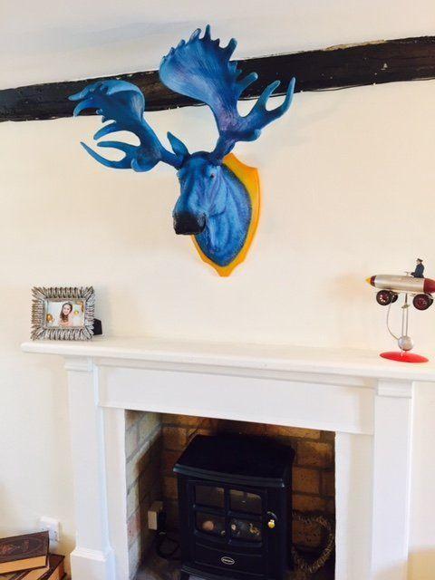 http://fancy.com/things/820255389051261455/Blue-Moose-Trophy-Head