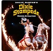 Dixie Stampede in Branson, Missouri and Pigeon Forge, Tennessee. Branson, Missouri, Dixie Stampede, shows in Branson, travel, vacation, www.recipesforourdailybread.com