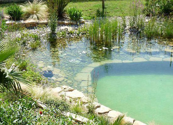 Natural Swimming Pools Or Swimming