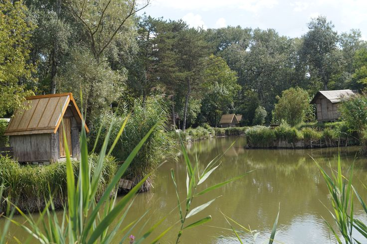 Angler lake Sződliget