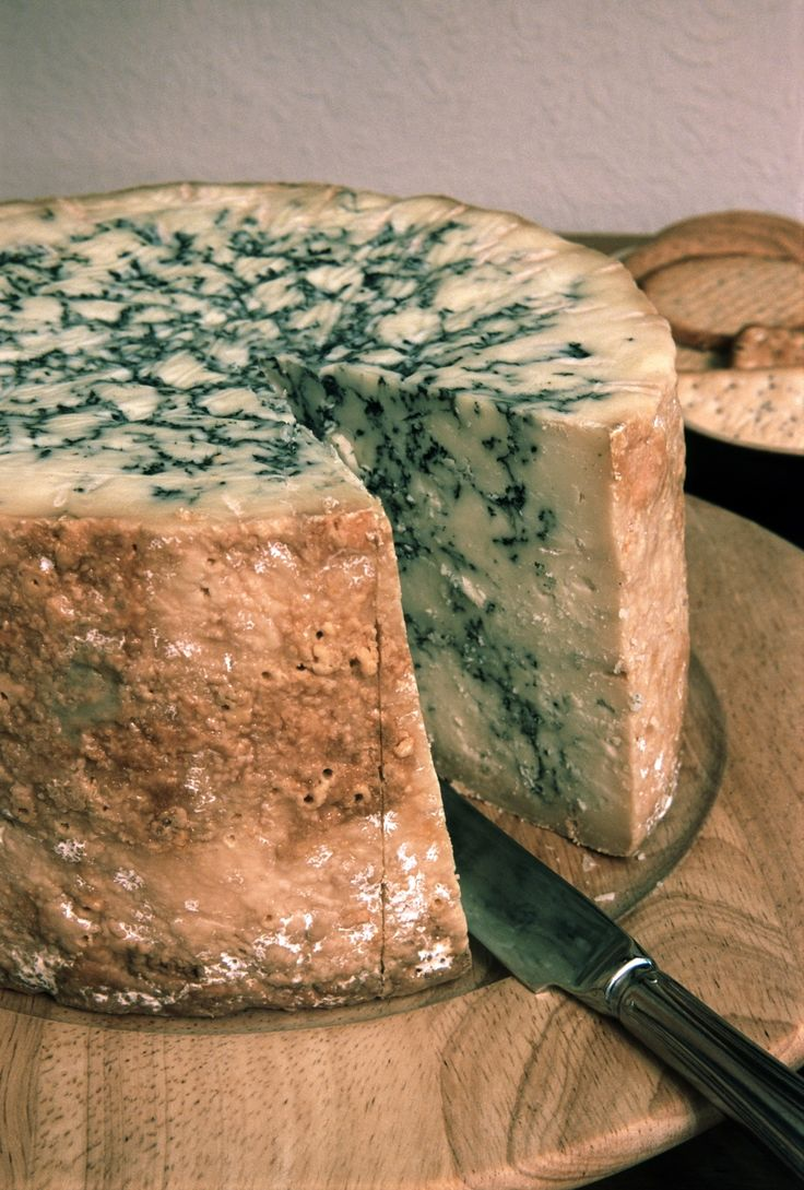 Stilton#Сarde #PutDownYourPhone.
