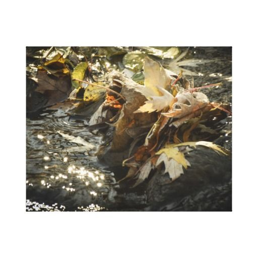 Fall leaves water photo stretched canvas print