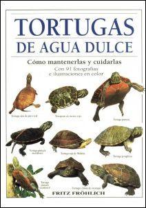 Las tortugas ornamentales de agua dulce son animales domésticos fascinantes. Esta guía le enseña todo lo necesario para su buen mantenimiento y cuidado y le muestra los mejores ejemplares, las tortugas de agua dulce más bonitas y famosas.
