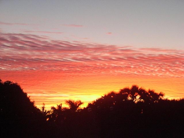 Broome daybreak