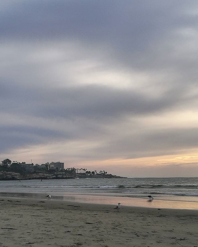Sunset lover... #lajolla #lajollashores #lajollashoresbeach #sandiego #california #californiaroadtrip #springbreak #april2017 #californialove #sunset #californiasunset #pacificocean #blessed #francaisauxusa #colorsofsunset #lajollalocals #sandiegoconnection #sdlocals - posted by Julie  https://www.instagram.com/comme__une_evidence. See more post on La Jolla at http://LaJollaLocals.com