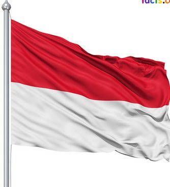 This is the Indonesian flag and you can say that it not only represents Indonesia but people as well. The flag has two colors, the red color represents the human body and the white color represents the human soul.
